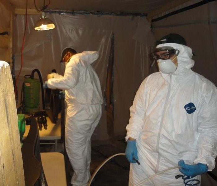 Mold Remediation Is Do-It-Yourself Mold Remediation a cost-effective alternative?