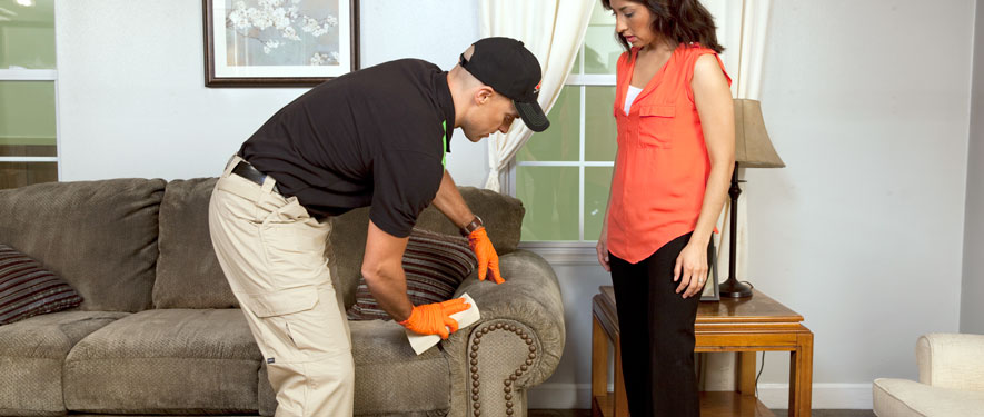 Thomasville, NC carpet upholstery cleaning