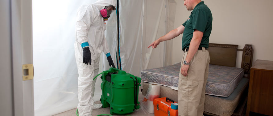 Thomasville, NC mold removal process